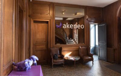Illustration et tournage interview WTTJ – Akeneo